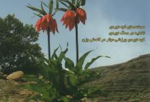Photo of فصلنامه کوه شماره ۹۴